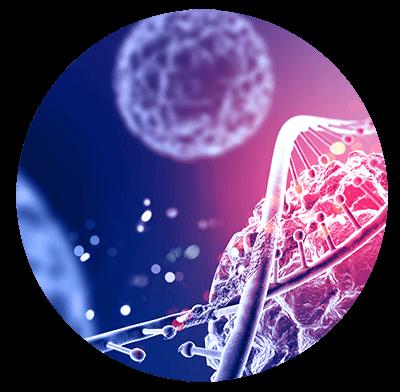 Análise de Dados Epidemiológicos com SPSS